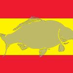 WCC-flag-Spain-240x160.jpg