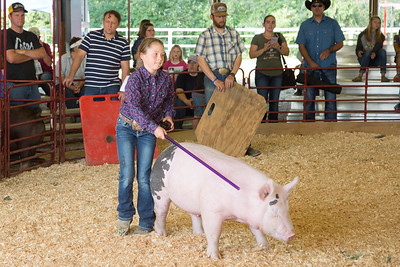 Swine Show 2018