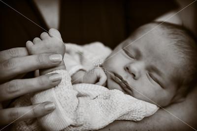 Baby Donovan • Newborn Session