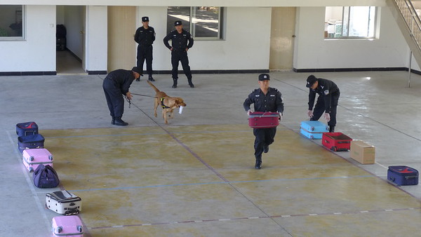 Wildlife Trafficking Customs Officers Training in China