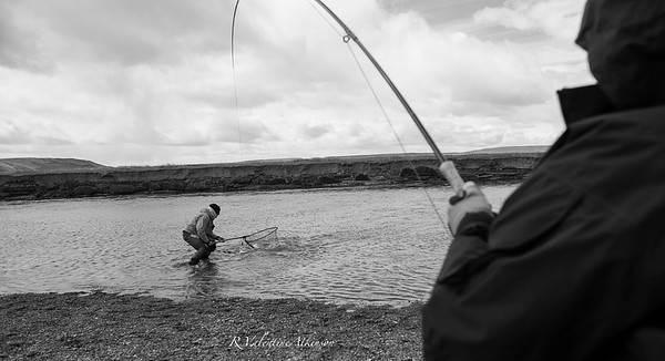 The Villa Sea Trout-45.jpg