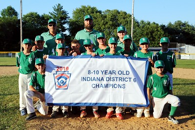 2019 Little League 8-10 Baseball Tournament