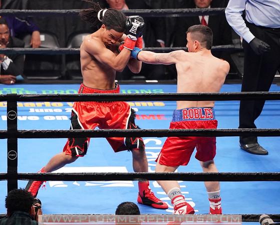 Kenny Robles vs. Roy Mcgill