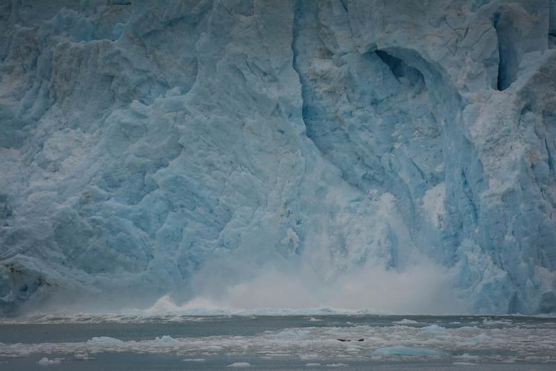 Kenai-Fjords-125.jpg