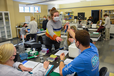 Biology Enzyme Testing Lab