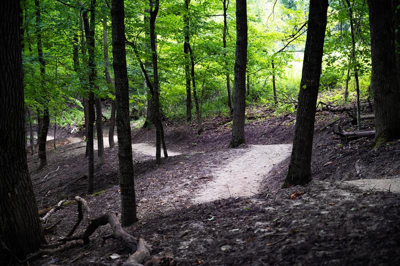 08-04-2020-trail-25.jpg