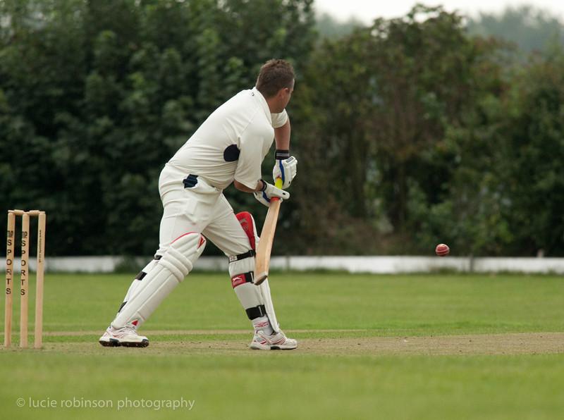 110820 - cricket - 086-2.jpg