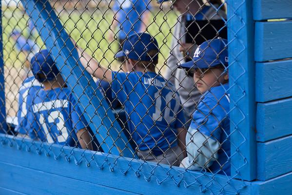 Machine Pitch NL Dodgers vs Williamsfield Cubs