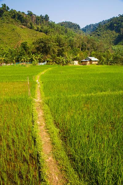 Vietnam-200.jpg