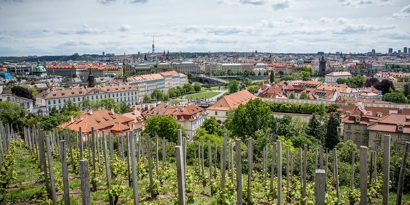 Prague-0356.jpg
