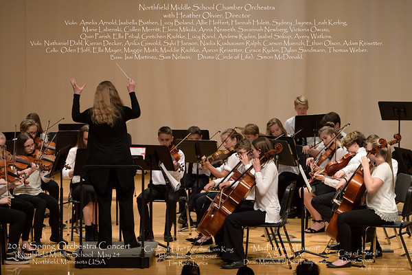 NMS Chamber Orchestra