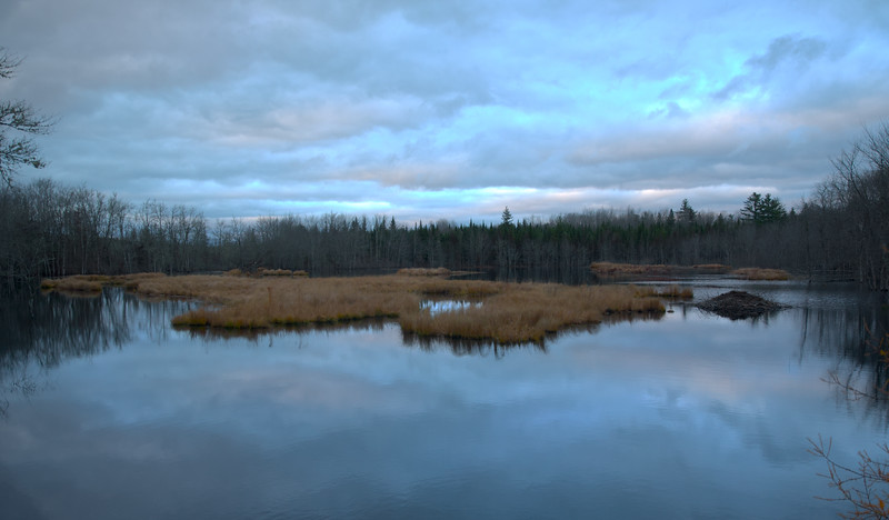 Lake Torment Beaver Dam