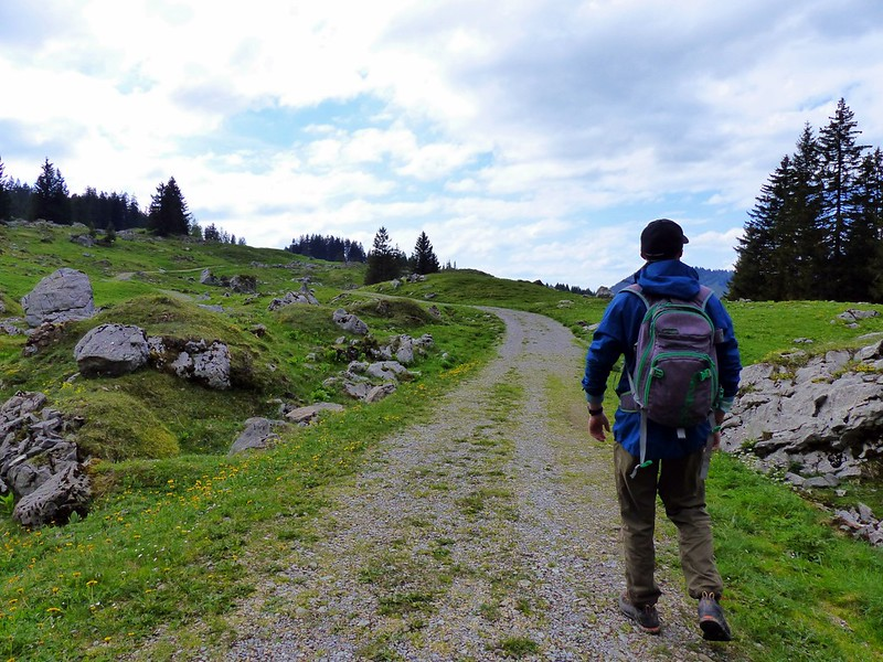 travel to Switzerland on a budget hiking.JPG
