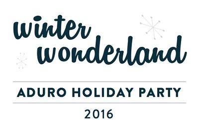 Aduro Winter Wonderland 2016