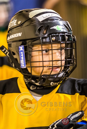 Timbits at the Otters 2/15/14