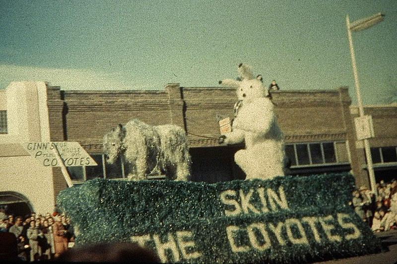 Skin The Coyotes.jpg