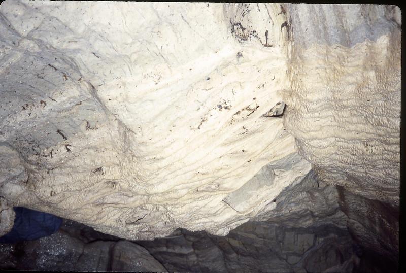 Image4-1.tif