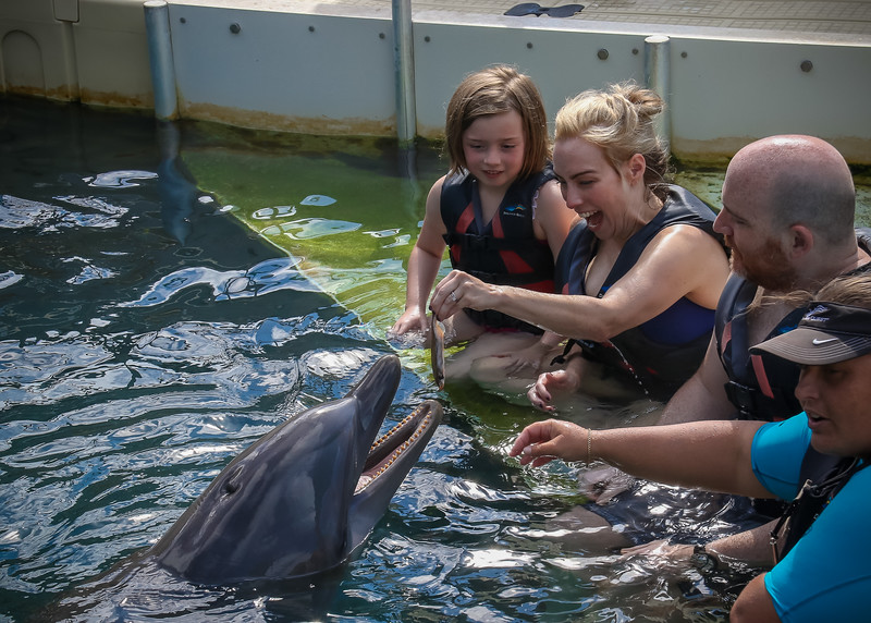 2019 August Dolphin Quest-139.jpg