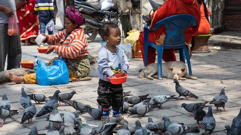 190407-121617-Nepal India-5862.jpg