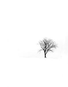 Frozen - Christine Gibson