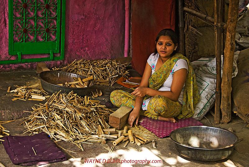 India2010-0211A-434A.jpg