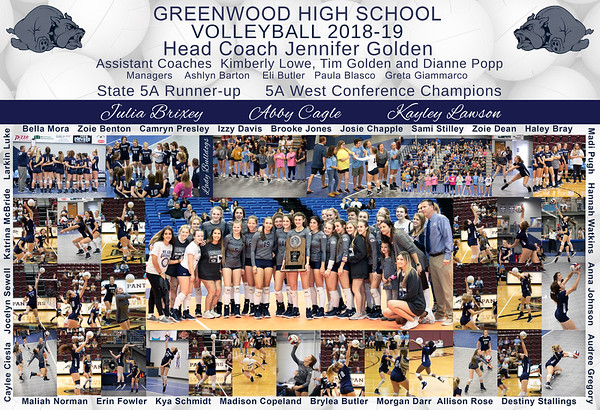Greenwood Volleyball   2018