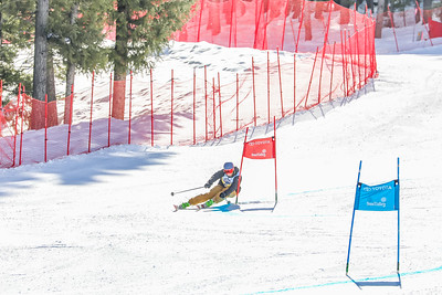 Giant Slalom -  Womens Run Two