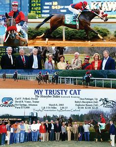 MY TRUSTY CAT - 3/08/2003