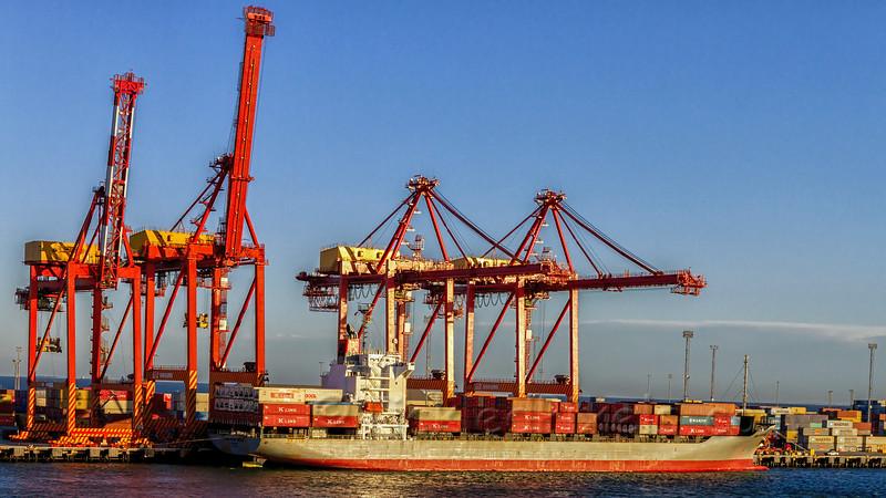 Container Ship 'Swan River Bridge'