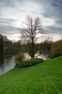 Songs From OSLO..