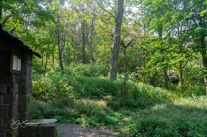 at hike-00476.jpg