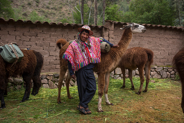 Cusco Llamatrek Pumahuanca
