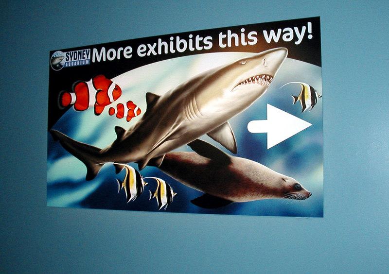 31.  Sydney Aquarium.JPG