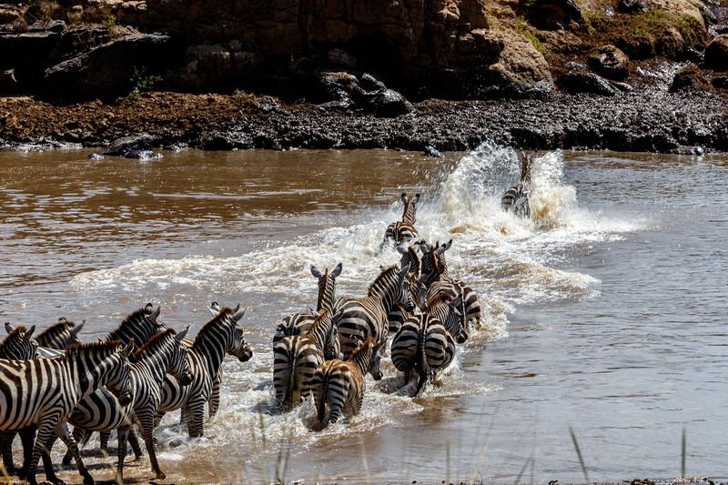 Kenya 2015-02476.jpg