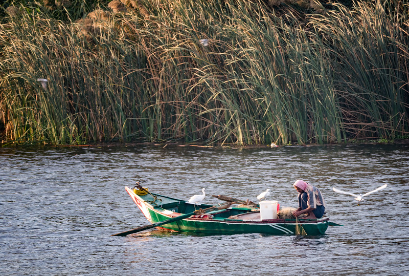 Nile River Fisherman