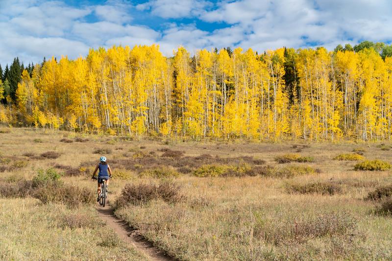 Trails_2000.jpg