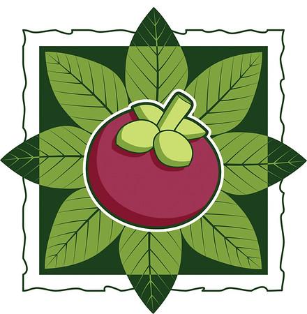 Mangosteen Logo