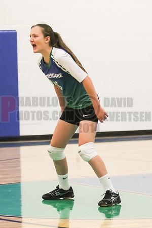 Girls JV Volleyball #3 - 2014
