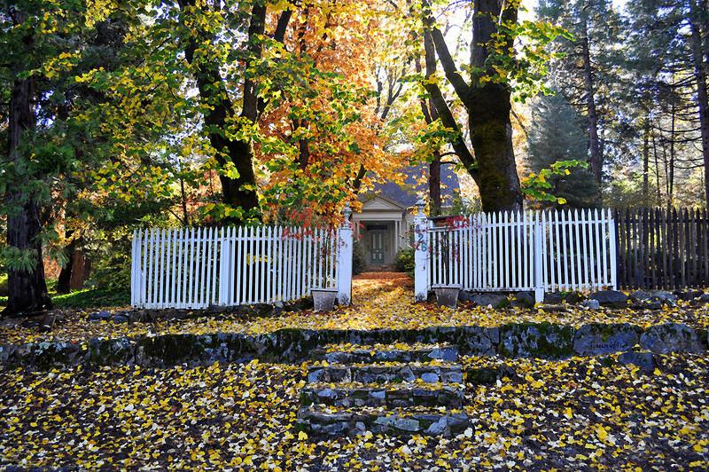 welcome walk 11-17-2010.jpg