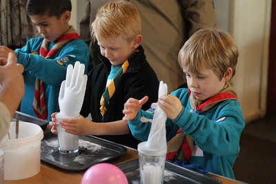 Beavers - Science Afternoon (January 2017)