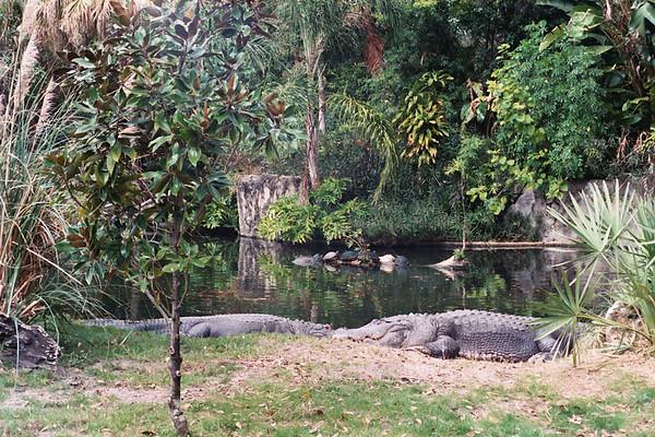 Florida February 2003