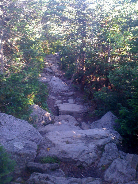 Trail from Mizpah