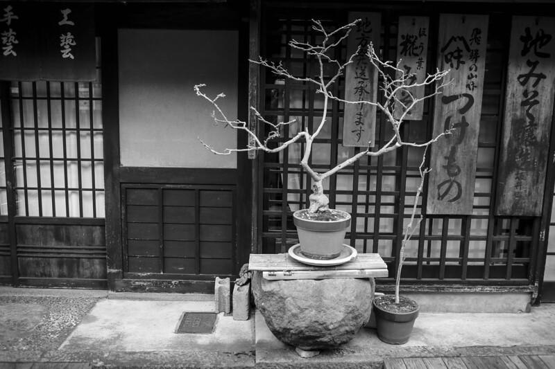 Takayama and Shirakawa 290313 53 .jpg