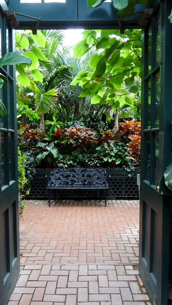 The greenhouse at Biltmore