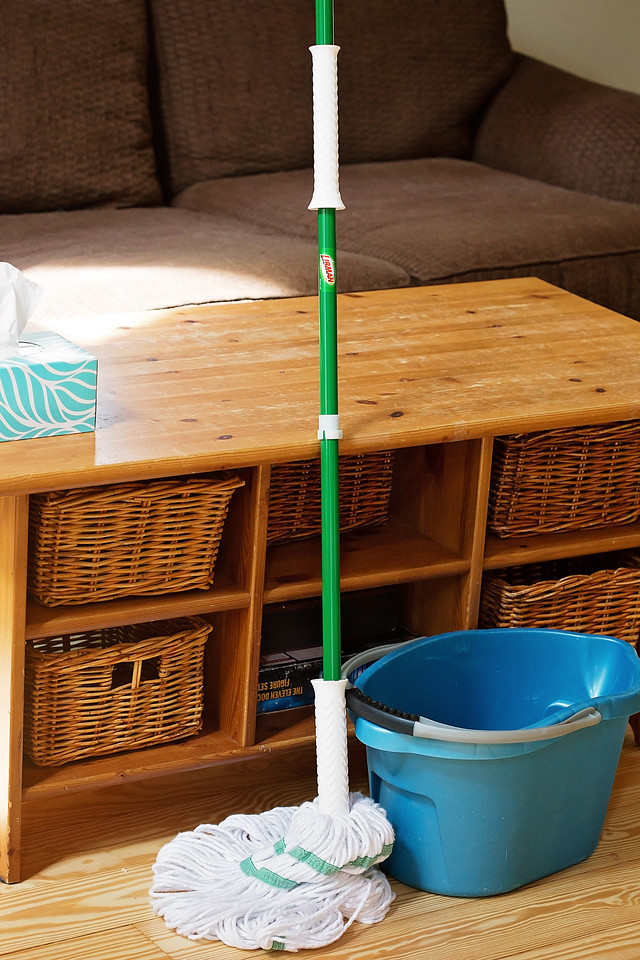 Ready to #EmbraceLifesMesses? My pets are no match for my Tornado Mop! Find out the best mop for having pets! #ad #TheLibmanCompany