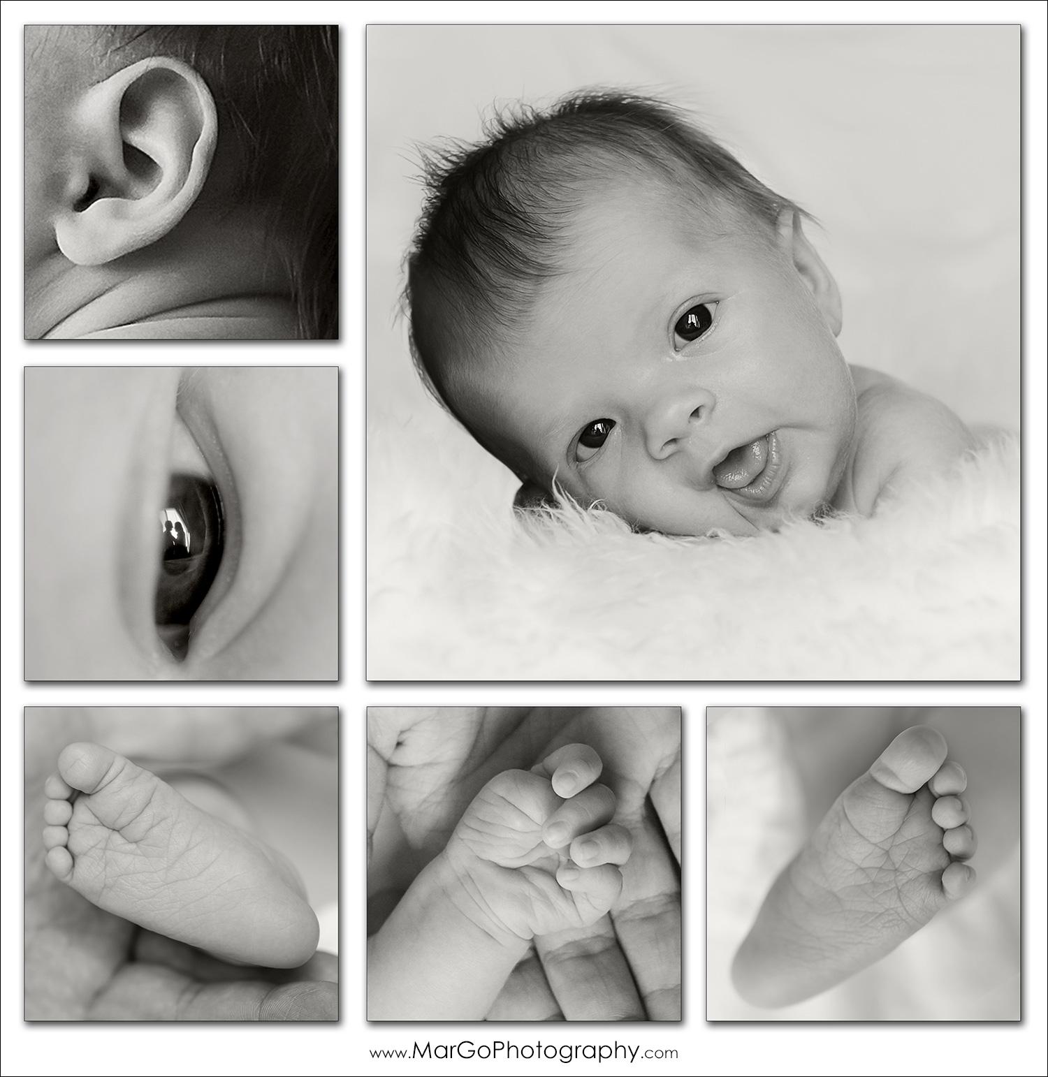 newborn collage poster