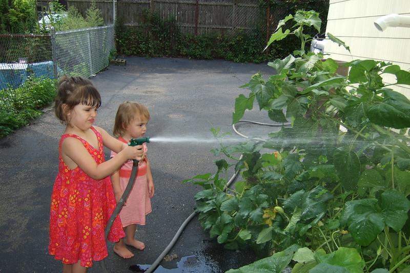 Watering the little garden.