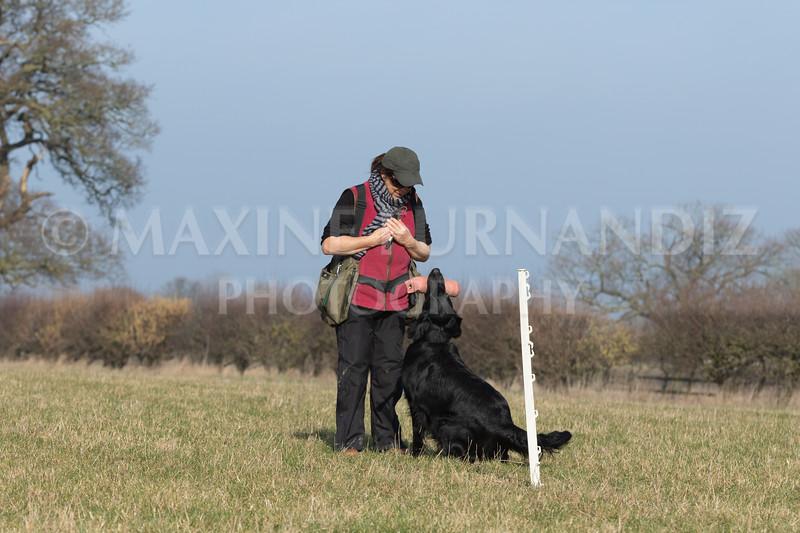 Dog Training Novice GD Feb2019-5775.jpg