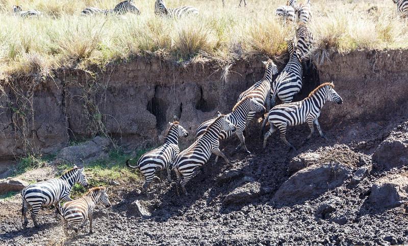 Kenya 2015-02550.jpg