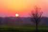 """""""Morning Sun"""""""